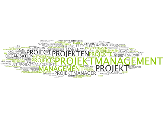 Projektmanagement Blog